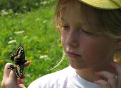 Butterfly-cyndi-smith