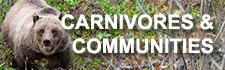 carnivores-and-communities