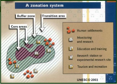 The Zonation System
